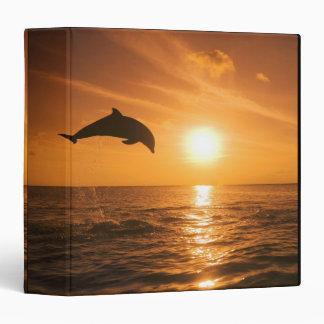 Bottlenose Dolphin jumping Binders