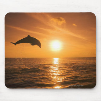 Bottlenose Dolphin jumping Mouse Pad