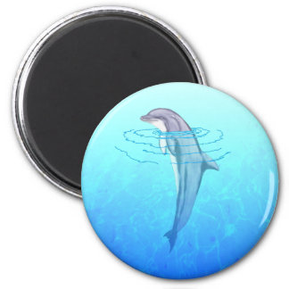 Bottlenose Dolphin Refrigerator Magnets