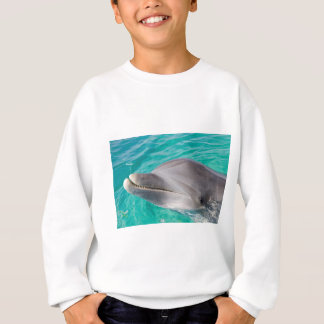 bottlenose dolphin photo sweatshirt