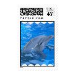 Bottlenose Dolphin Stamp