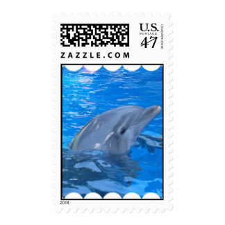 Bottlenose Dolphin Stamp