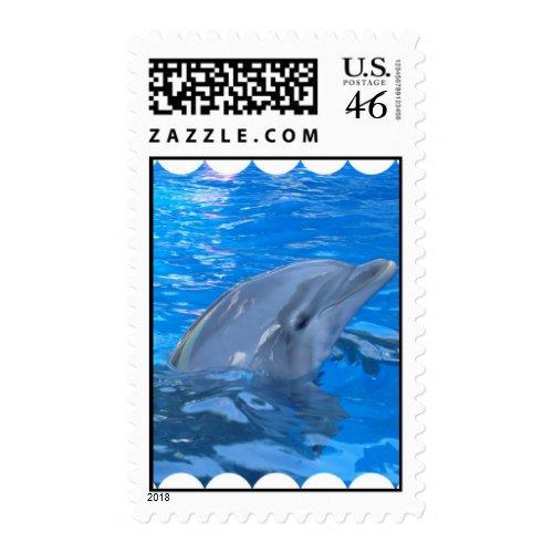 Bottlenose Dolphin Stamp stamp