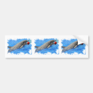 Bottlenose dolphin swimming with red ball bumper sticker