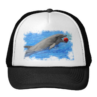 Bottlenose dolphin swimming with red ball trucker hat