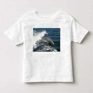 Bottlenose Dolphin Toddler T-shirt
