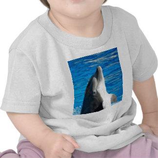 Bottlenose Dolphin Tee Shirt