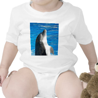 Bottlenose Dolphin Bodysuits