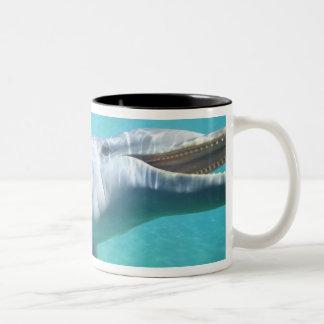 Bottlenose Dolphin Tursiops truncatus), 2 Two-Tone Coffee Mug