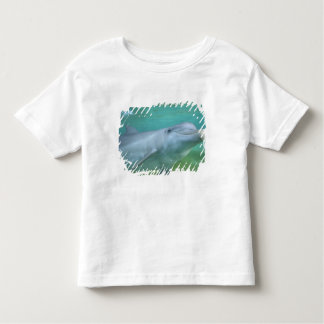 Bottlenose Dolphin Tursiops truncatus), Toddler T-shirt