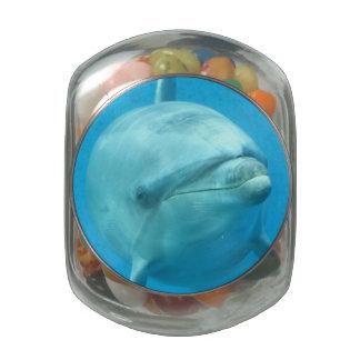 Bottlenose Dolphin Underwater Glass Jars