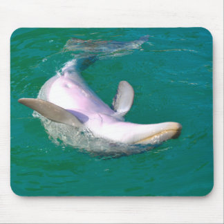 Bottlenose Dolphin Upside Down Mouse Pad