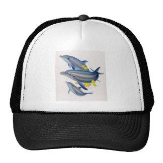 Bottlenose Dolphins in Concert Trucker Hat