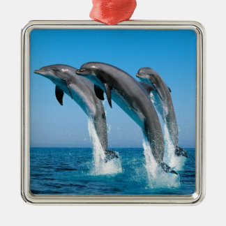 bottlenose dolphins jumping out of clear blue sea metal ornament