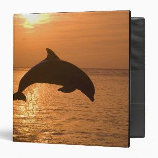 Bottlenose Dolphins Tursiops truncatus) 11 Vinyl Binders