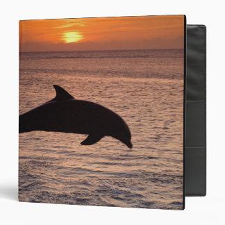 Bottlenose Dolphins Tursiops truncatus) 13 Vinyl Binder