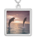 Bottlenose Dolphins Tursiops truncatus) 15 Silver Plated Necklace