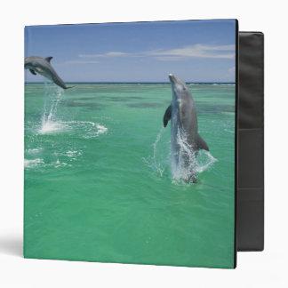Bottlenose Dolphins Tursiops truncatus) 17 3 Ring Binders