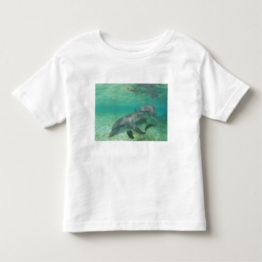Bottlenose Dolphins Tursiops truncatus) 25 Toddler T-shirt