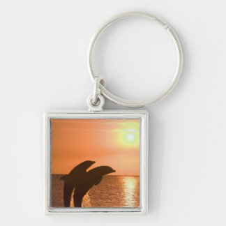 Bottlenose Dolphins Tursiops truncatus) 2 Silver-Colored Square Keychain