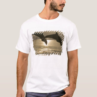 Bottlenose Dolphins Tursiops truncatus) 30 T-Shirt