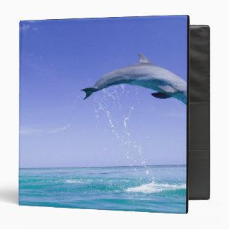 Bottlenose Dolphins Tursiops truncatus) 31 Binder