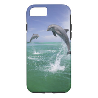 Bottlenose Dolphins Tursiops truncatus) 4 iPhone 7 Case