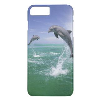 Bottlenose Dolphins Tursiops truncatus) 4 iPhone 8 Plus/7 Plus Case