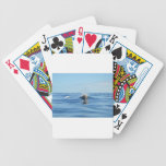 Bottlenose Whale Bicycle Poker Cards