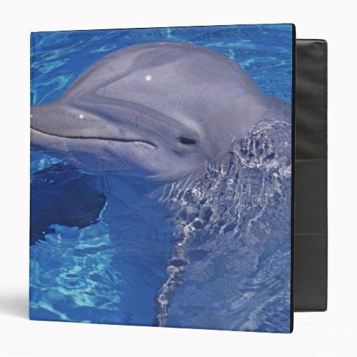 Bottlenosed Dolphin, Tursiops Truncatus Vinyl Binder