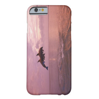 Bottlenosed Dolphins Jumping at Sunset Barely There iPhone 6 Case