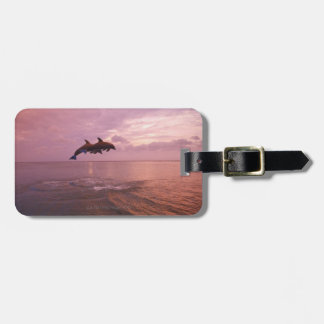 Bottlenosed Dolphins Jumping at Sunset Tags For Luggage