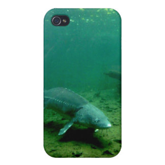 Bottom Dweller Cover For iPhone 4