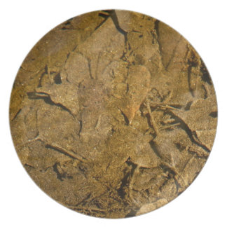 BOTTOM OF A RIVER WITH GOLD SPECKS DINNER PLATE