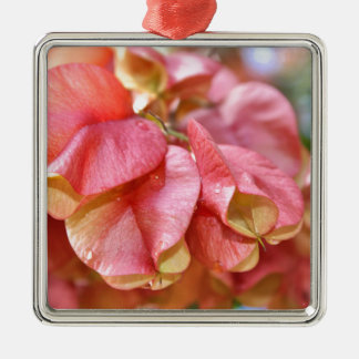 Bougainvilla Pink Gold Seed Pods Metal Ornament