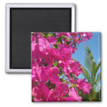 Bougainvillea and Palm Tree Tropical Nature Scene 2 Inch Square Magnet