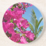 Bougainvillea and Palm Tree Tropical Nature Scene Coaster