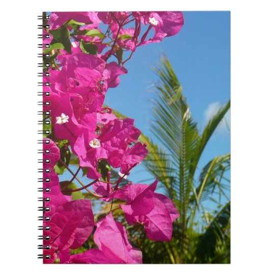 Bougainvillea and Palm Tree Tropical Nature Scene Notebook