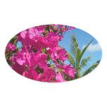 Bougainvillea and Palm Tree Tropical Nature Scene Oval Sticker