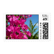 Bougainvillea and Palm Tree Tropical Nature Scene Postage