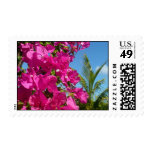 Bougainvillea and Palm Tree Tropical Nature Scene Postage Stamp