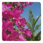 Bougainvillea and Palm Tree Tropical Nature Scene Trivet