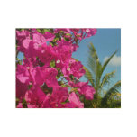 Bougainvillea and Palm Tree Tropical Nature Scene Wood Poster