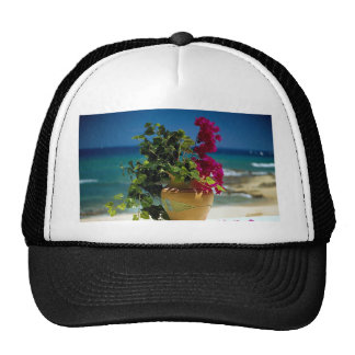 Bougainvillea, Baja, Mexico Trucker Hat