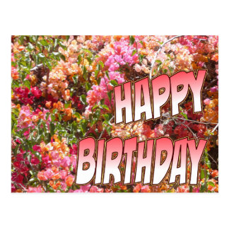 Bougainvillea Birthday Postcard Pink