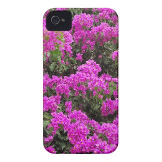Bougainvillea Case-Mate iPhone 4 Case