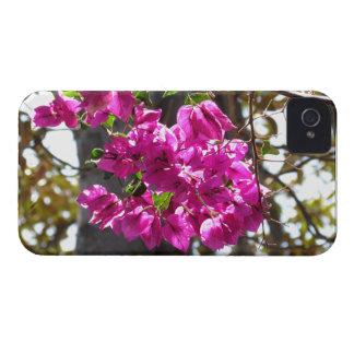 Bougainvillea Case-Mate iPhone 4 Cases