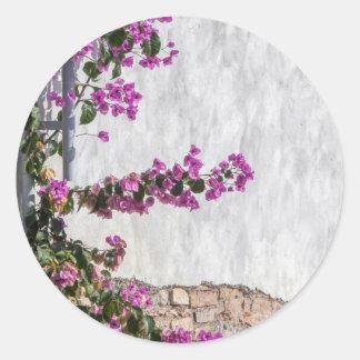 bougainvillea en la pared como textura etiquetas redondas