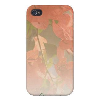 Bougainvillea IPhone 4 Speck Case iPhone 4/4S Cases