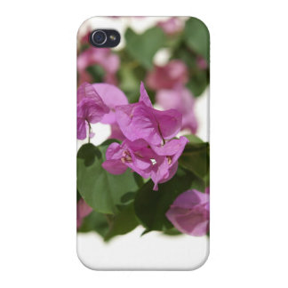 Bougainvillea Cases For iPhone 4